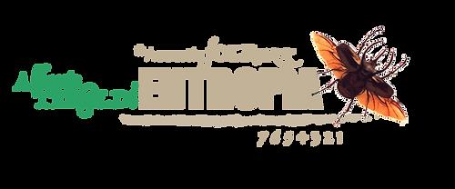 logo_*Entropìa_Tavola_disegno_1.png
