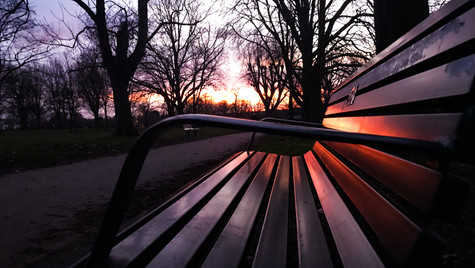 Bench Reflections II