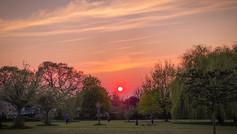 Ealing Sunset