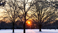 Ealing Snow Feb 18
