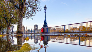 Westminster Reflections