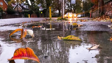 07/11/2018 - November Rain