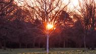 Sunrise in Walpole Park