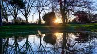 Mirror Reflection in Lammas Park