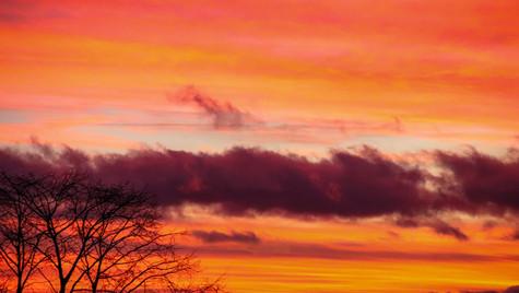 Red Sky at Night V
