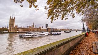 Autum Westminster