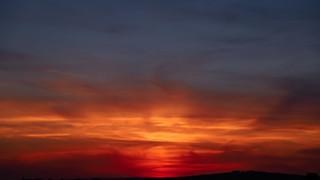 Sussex Sun