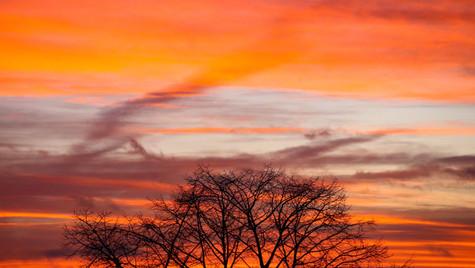 Red Sky at Night VI