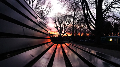 Bench Reflections I