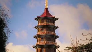 Pagoda Feb 2019