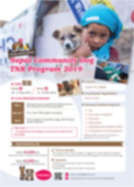 尼泊爾社區狗隻絕育計畫 Nepal Community Dog TNR Program