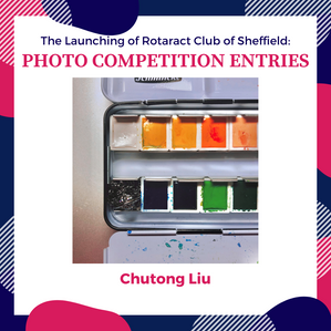 Chutong Liu - WINNER!