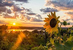 August_2014_Portland_Maine_20140809-DSC_