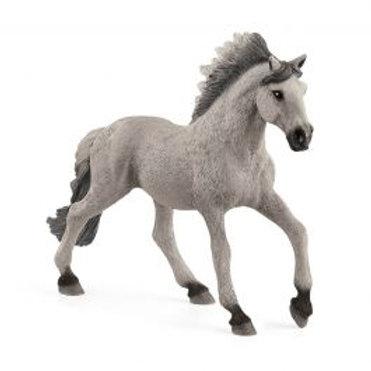 SCHLEICH Etalon Mustang Sorraia 13915