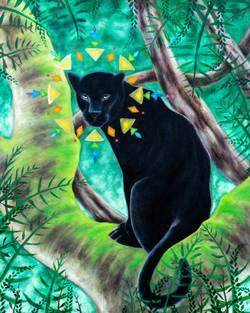 Panther Medicine