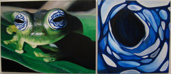 Frog Diptych