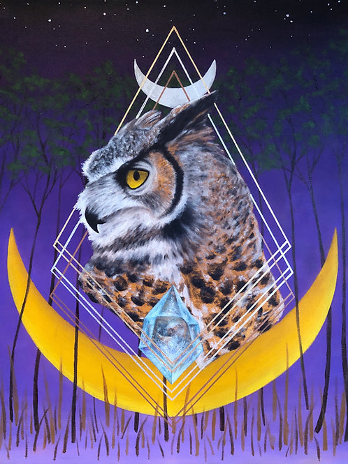 "Age of the Owl - 16x20"" canvas print"