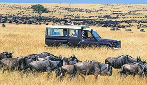 masai-mara-safari-great-migration-fp.jpg