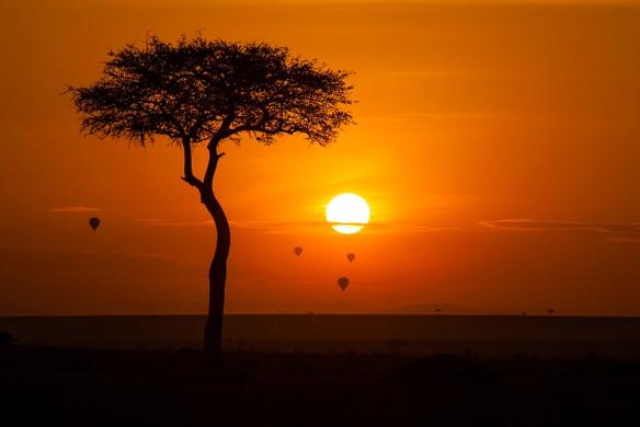 Maasai_Mara_National_Reserve_Kenya.jpg