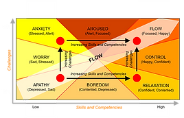 FLOW concept by Prof. M. Csikszentmihalyi