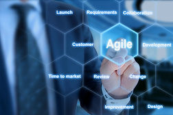 Agile organizational development