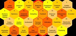 Leadership skills - Executive Core Qualifications