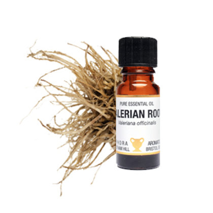 VALERIAN ROOT ESSENTIAL OIL (Stress Reliever)