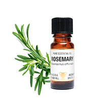 ROSEMARY ESSENTIAL OIL ((Memory Digestion & Mental Fatigue)