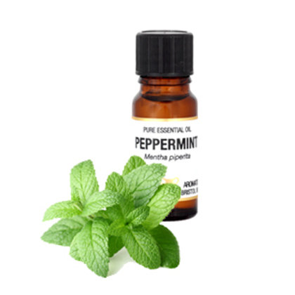 PEPPERMINT ESSENTIAL OIL (Head & Back Pain Relief, Nausea and Decongestant)