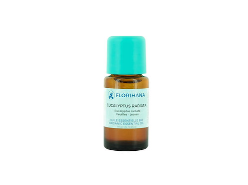 EUCALYPTUS RADIATA ESSENTIAL OIL (Sinus Relief & Muscle Care)