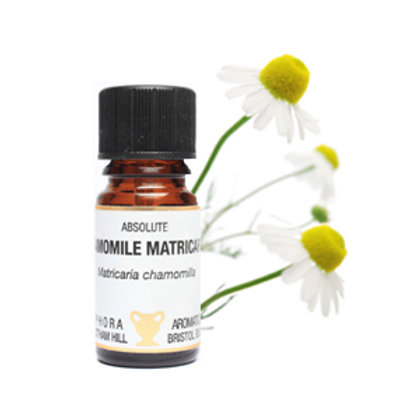 CHAMOMILE GERMAN STEAM DISTILLED (Eases Insomnia & Stress)