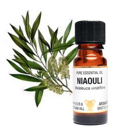 NIAOULI ESSENTIAL OIL (Anti-rheumatic & Great Decongestant)