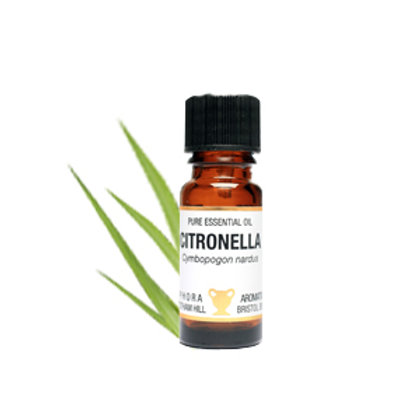 CITRONELLA ESSENTIAL OIL (Insect Repellent)