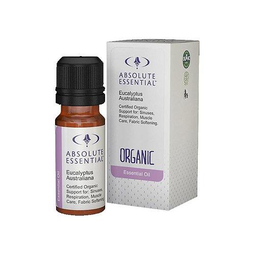EUCALYPTUS AUSTRALIA ESSENTIAL OIL  (Sinus Relief & Muscle Care)