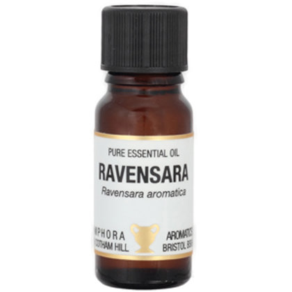 RAVENSARA ESSENTIAL OIL (Body Pain Relief)