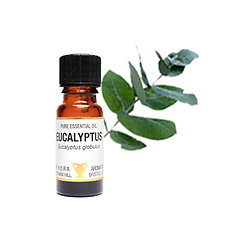 EUCALYPTUS ESSENTIAL OIL (Sinus Relief & Muscle Care)