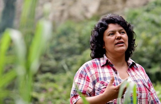 Ecofeminism Achievements and Challenges in South America