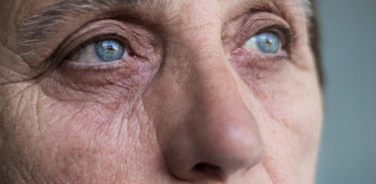 Seminar: Latest Treatments in Age-Related Macular Degeneration
