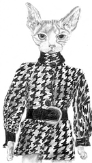 Cat in clothes, Pretty Pixy, Big eyed whimsical girls and dolls