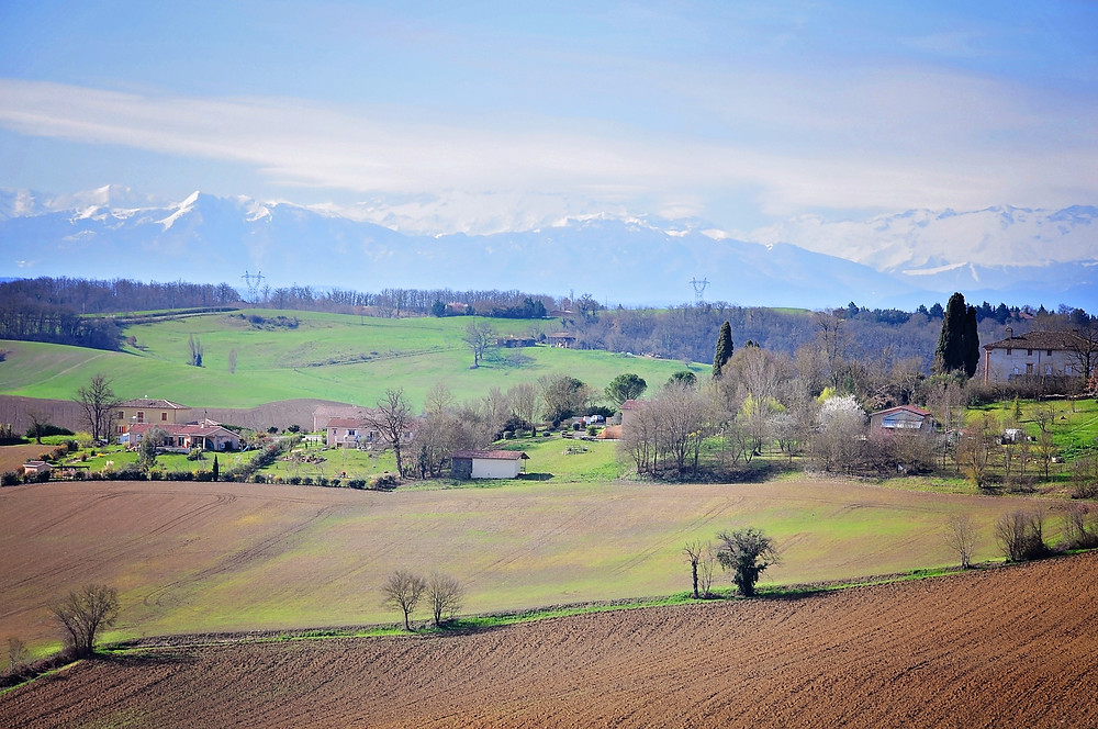 pyrenees2.jpg