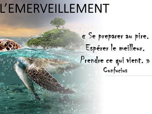 L'EMERVEILLEMENT