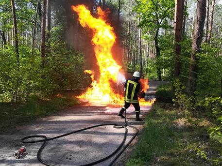 Brand eines PKW