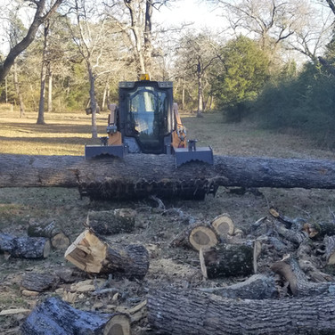 Case TV380 with grapple picking up a large oak trunk.