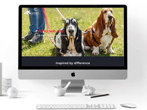 Alphen Veterinary Hospital Website