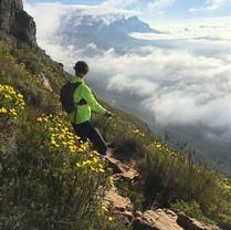 Silvermine Nature Reserve, Cape Town