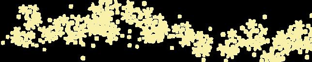 キラキラ-01.png