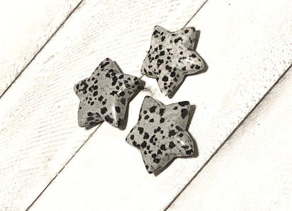 Dalmatian Jasper Star