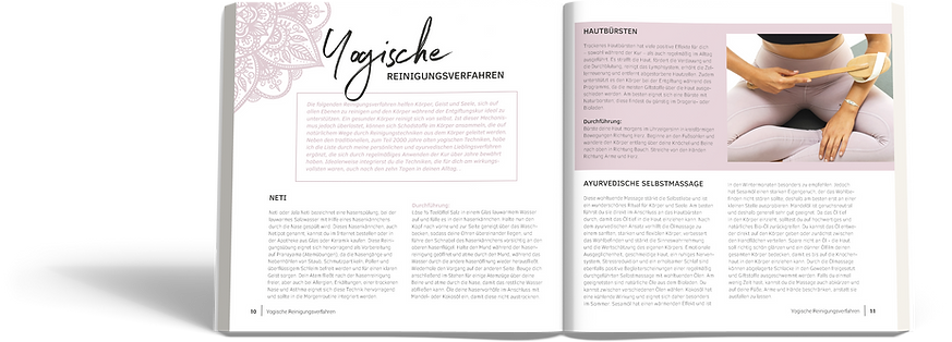 TheYogisCleanse_20x23,5_YogischeReinigun