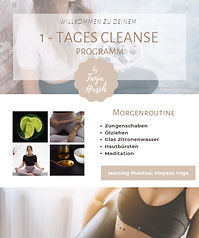 1-Tages-Cleanse