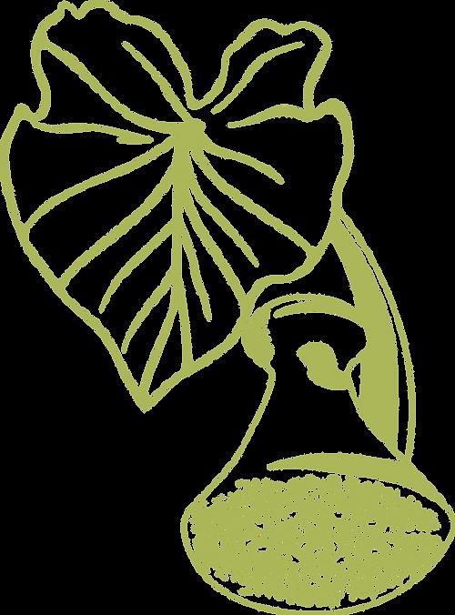 Taro_Logo_lowviz_outline.png